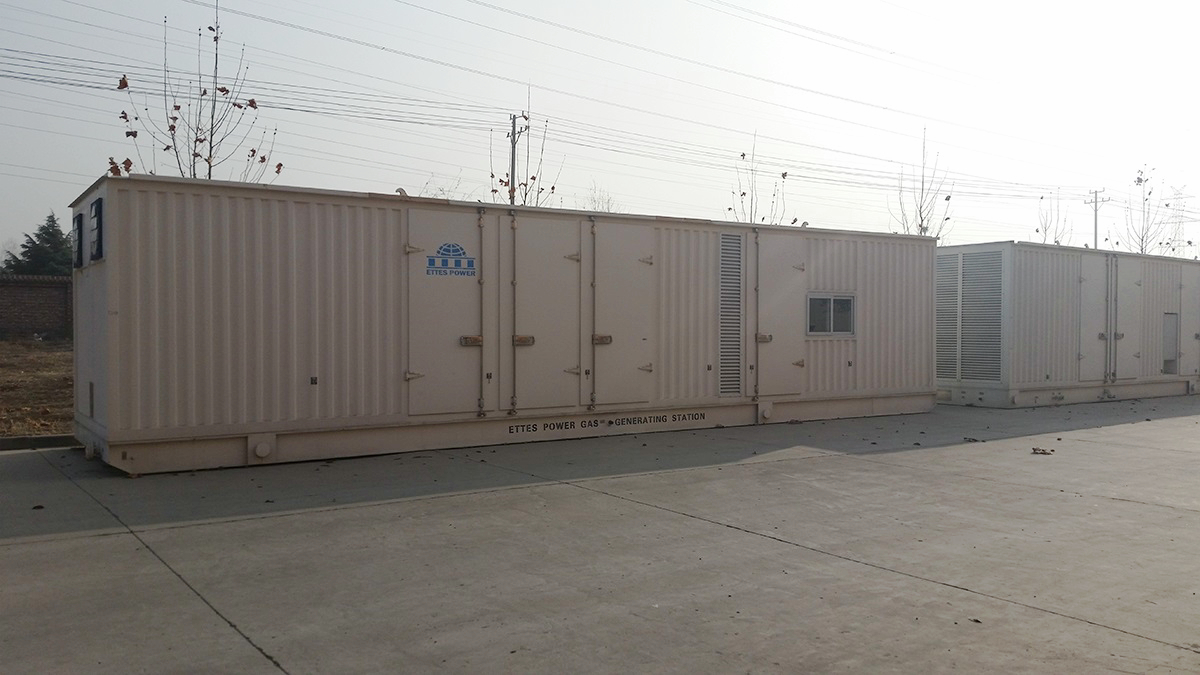 Ettes Power 1000KW Container Gas Engine Generator 6.3KV