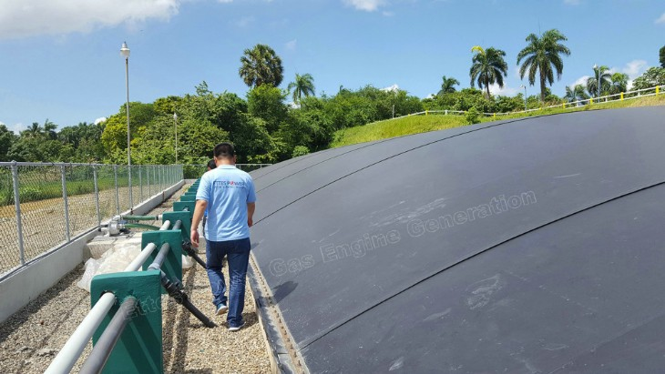 Ettes Power Commissioning of 500kW Digester Biogas Generators in Dominica Republic Ettespower